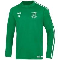 TSV Bad Abbach Jako Sweat Striker 2.0